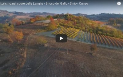 Video Agriturismo Langhe Bricco del Gallo ripresa aerea Bricco del Gallo e dintorni